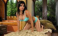 Sunny Leone in lingerie