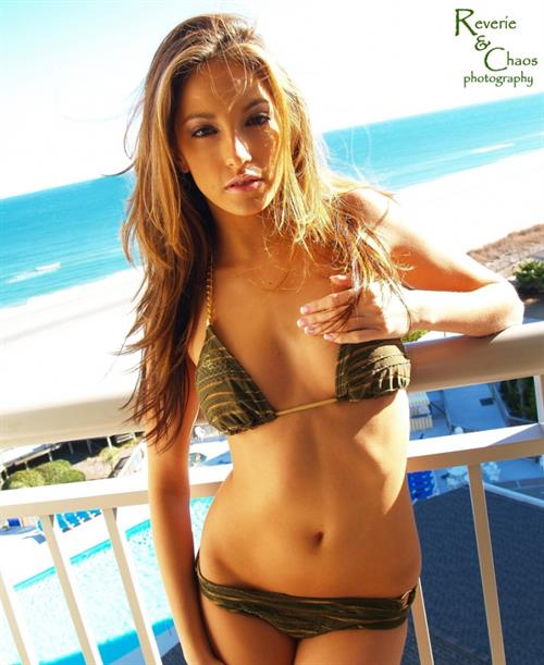 Jenna Haze in a bikini