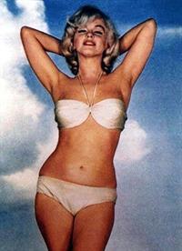 Marilyn Monroe in a bikini