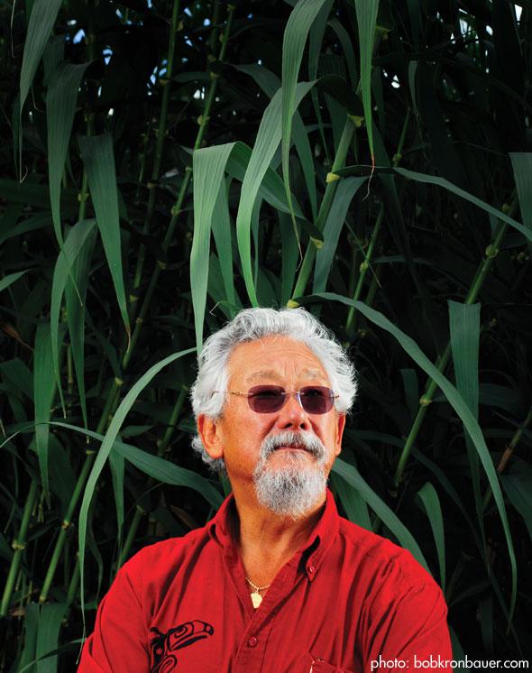 david suzuki hidden lessons David takayoshi suzuki cc obc frsc (born march 24, 1936) is a canadian academic, science broadcaster and environmental activist.
