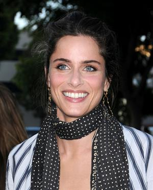 Amanda Peet at the Pineapple Express premiere in Westwood