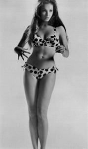 Julie Newmar in a bikini