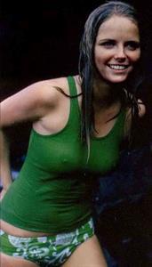 Cheryl Tiegs - breasts