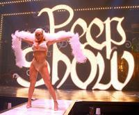 Nicole Coco Austin in lingerie