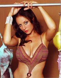 Michelle Wild in a bikini