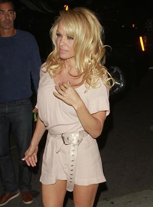 Pamela Anderson Mario Testino Gallery Exhibition Opening West Hollywood February 23, 2013